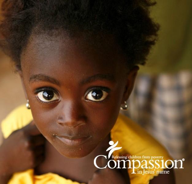 A Compassion Blogger?