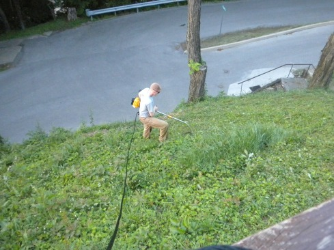 """Mowing our """"lawn"""" for the first time"""