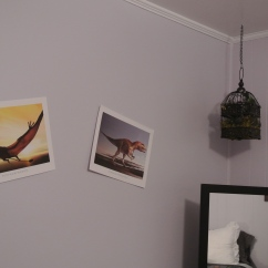 Some dinosaur decor in our guest room.